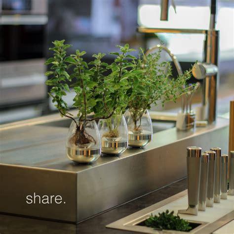 best indoor garden kits images interior design ideas