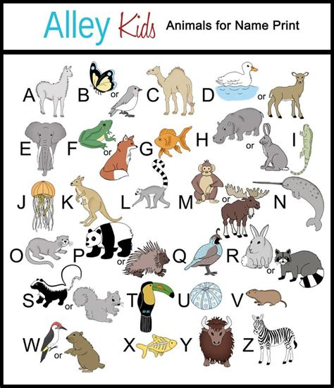 7 Letter Word Animal Names Alleykids Animalsname 1024x1024jpg Animals Photo With