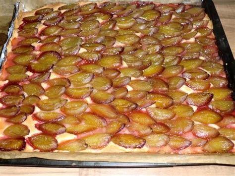 gefrorene pflaumen kuchen backen 1000 bilder zu backen auf kuchen rezepte und
