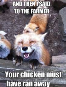 Fox Meme - happy fox meme
