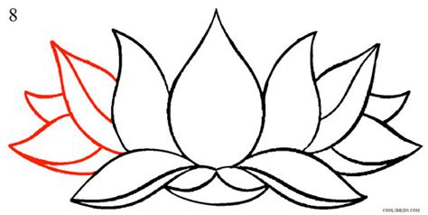 how to draw lotus flower step by step pictures cool2bkids