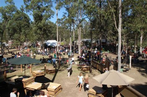 The Tents Are Here To Stay 3 by Dashville Grounds Picture Of Tent Stay Belford