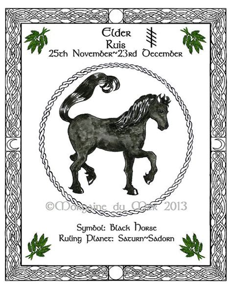 Celtic Tree Calendar Black Elder Celtic Tree Calendar Lunar By