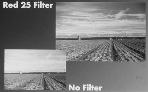 tiffen black and white filters