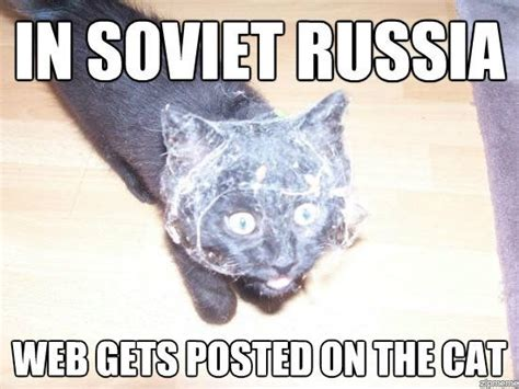 Russian Cat Meme - in soviet russia web gets posted on the cat weknowmemes
