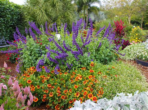 easy flower garden easy care garden ideas costa farms