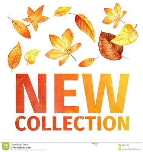 New Collection watercolor leaves new collection stock illustration image 43791105