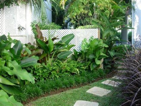 tropical landscape design, pictures, remodel, decor and