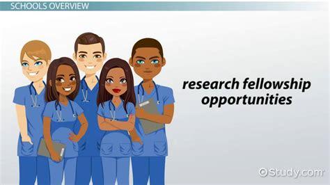 undergraduate nursing programs what are the top undergraduate nursing programs in the