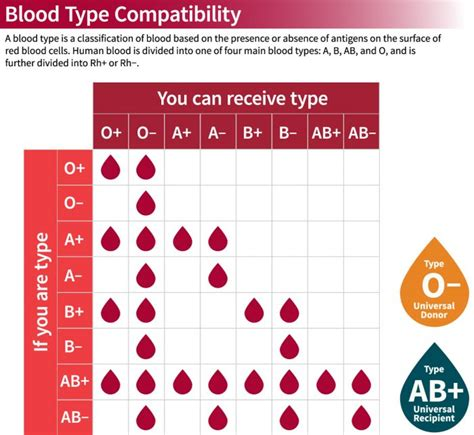 Blood Considers Adoption by Blood Types Stanford Blood Center