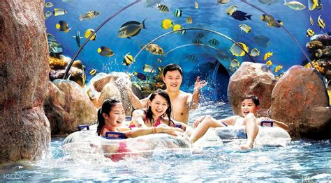 Tiket Adventure Cove Waterpark Singapore E Ticket Open Date Dewasa adventure cove waterpark tickets planet rovers