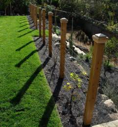 Cost Of Fencing Backyard - grape vine on fence home design ideas pictures remodel and decor