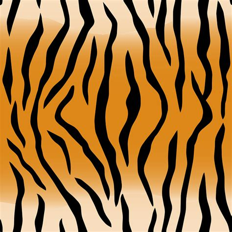 animal pattern font free vector graphic animal pattern skin stripes free