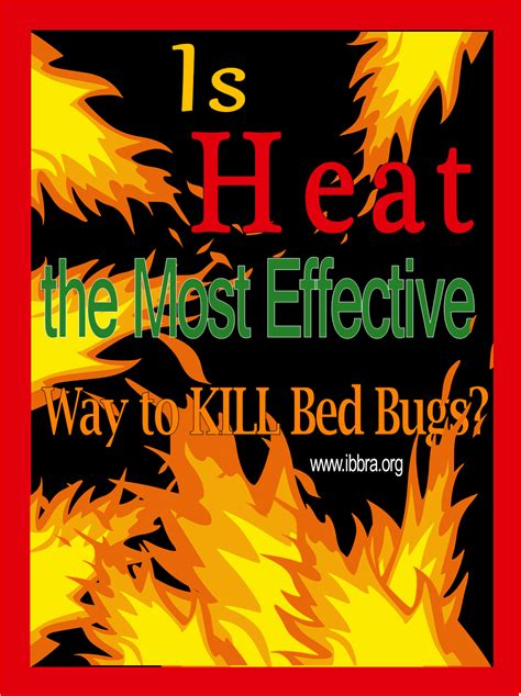 heat   effective   kill bed bugs ibbra