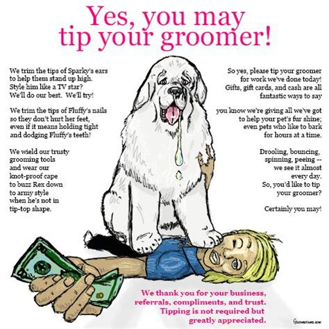 should you tip groomers stylists pets and hair on