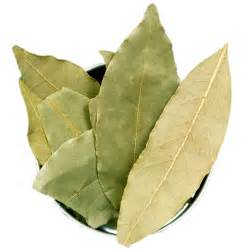 7 facts about bay leaves
