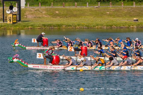 welland canal boat schedule 2015 2016 photos welland dragonboat festival