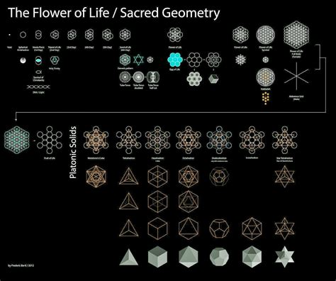 pattern of life meaning the foundations of sacred geometry