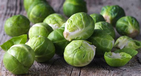 can dogs brussel sprouts 5 fruits and vegetables you can feed your and five you definitely shouldn t