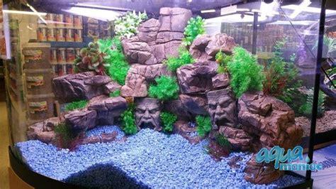 terrarium small ledge  reptiles