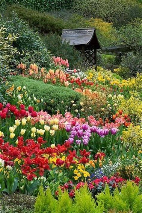 spring flower garden beautiful spring garden pictures photos and images for