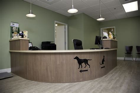 1000 images about veterinary interior ideas on pinterest theater view veterinary clinic terra pinterest pet