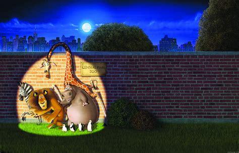 film cartoon zoo madagascar killing in the zoo cartoon wallpaper for ipad