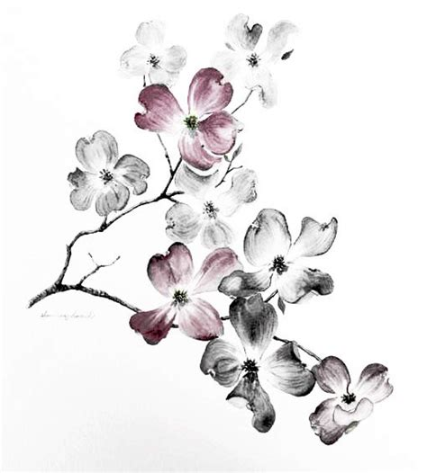 dogwood flower tattoo designs 25 best ideas about black watercolor on