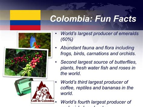 7 interesting facts about colombian orchids colombia colombia ppt video online download