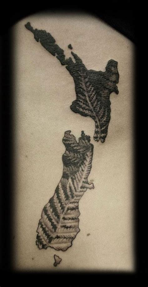 nz tattoo designs silver fern 25 best ideas about new zealand on