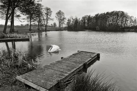 imagenes blanco y negro editar tutorial t 233 cnica greg gorman para blanco y negro