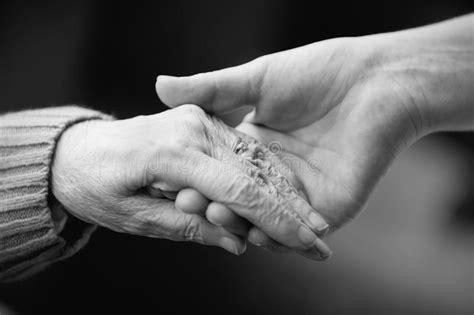 caring   elderly stock photo image  living hand