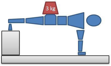 Komik Plue The Diary Set 1 3 End hotp 14 male plus 3kg fujian white crane kung fu chi
