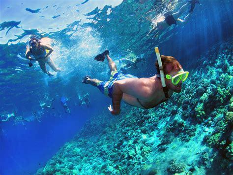 molokini crater snorkeling trips info maui hawaii