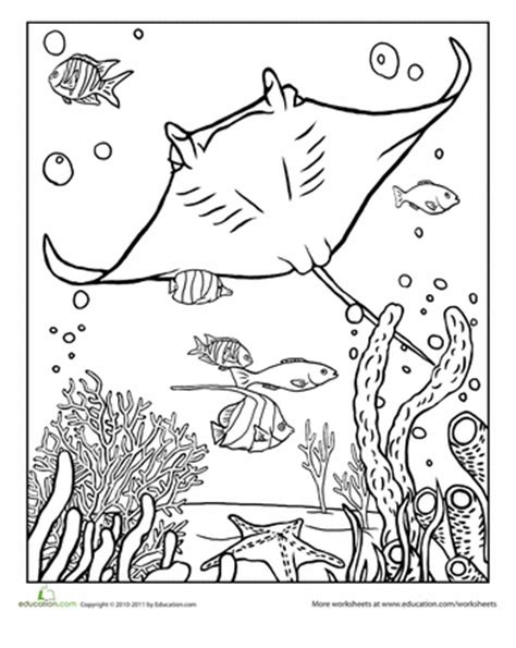 coloring pages sharks and rays manta ray coloring page manta ray worksheets and ocean