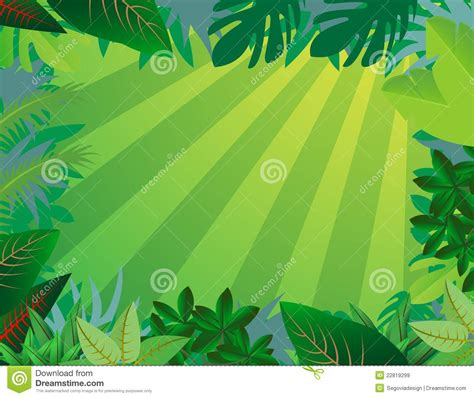 Jungle Dreams Wall Mural jungle forest background royalty free stock images image