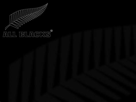 all black free zealand all black rugby hd backgrounds