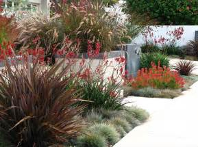 inexpensive landscaping ideas to beautify your yard