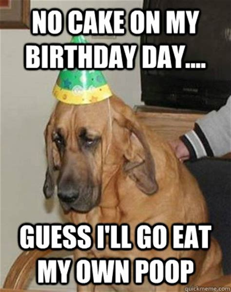 No Cake Meme - no cake on my birthday day guess i ll go eat my own