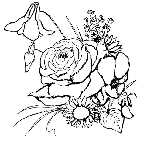 coloring pages of real flowers realistic flower coloring pages coloring home