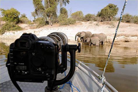 bean bag photography safari ten day photography safari tanzania world