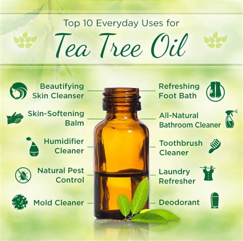 is pure tea tree oli good for ingrowing hairs how to use tea tree oil for yeast infections