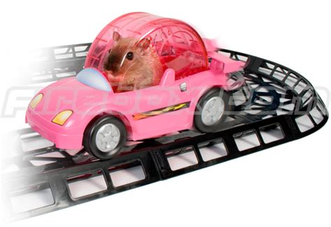 turn your hamster into a race car driver | ohgizmo!