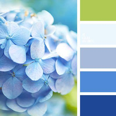 what color goes best with blue best 25 color palette blue ideas on blue