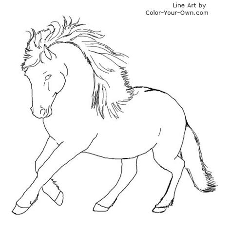 free a shetland pony coloring pages