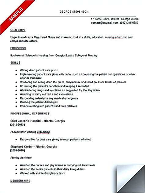 best 25 student resume ideas on cv template