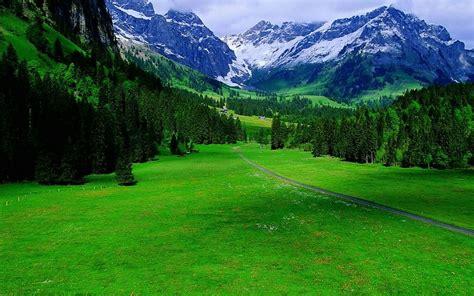 imagenes de paisajes verdes para pantalla paisajes verdes suiza fondos de pantalla gratis