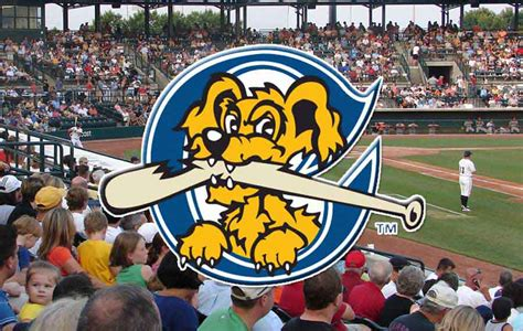 river dogs the greedy pinstripes charleston riverdogs new front office staff