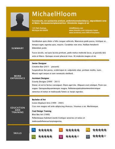 Unique Resume Templates by Resume Layout Design Resume Ideas