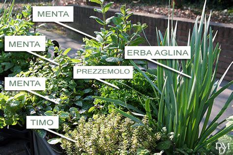 vasi per erbe aromatiche fioriere per erbe aromatiche mico vaso piccolo vaso
